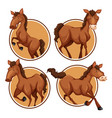 set of horse banner vector image