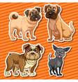 Small breeds dogs on orange background vector image vector image
