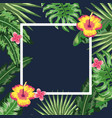 square frame with flowers and plants background vector image