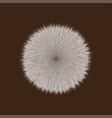 brown fluffy hair ball vector image vector image
