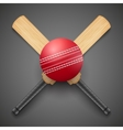 cricket leather ball and vector image vector image