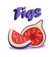 delicious ripe figs cartoon social media banner vector image vector image