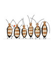 funny cockroaches for your design vector image vector image