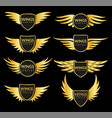 golden wing set creative sport or business vector image vector image