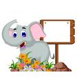 Cute elephant cartoon with blank sign vector image vector image