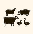 farm animals sketch farming vintage vector image