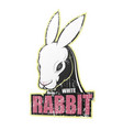 grunge poster with white rabbit vector image