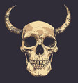 human skull with horns art hand drawn vector image vector image