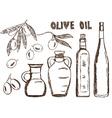 olive oils olives doodle vector image vector image