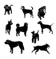 silhouettes dogs different breeds vector image