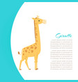 funny cartoon giraffe animal vector image vector image