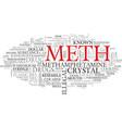 meth word cloud concept vector image vector image