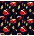 Poppy flower field vector image