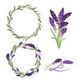 provence lavender flower bouquet set vector image