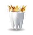 realistic white tooth in golden crown isolated on vector image vector image