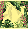 tropical leaves plants background style vector image vector image