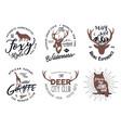 wild animal badges set included giraffe owl fox vector image vector image