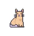 cat pixel art vector image