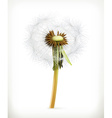 Head of dandelion summer flowers icon vector image