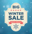 Plate big whinter sale and best price beige color vector image vector image