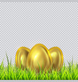 three golden eggs on a grass vector image vector image