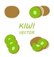 flat kiwi icons set vector image
