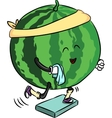 beautiful ripe watermelon is engaged in fitness vector image