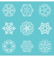 collection of snowflakes winter elements vector image
