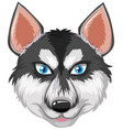 head of a husky vector image vector image