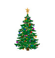 isolated image christmas tree holiday fir i vector image