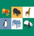 isometric zoo design concept vector image vector image