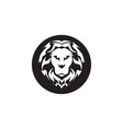 lion sport logo vector image vector image