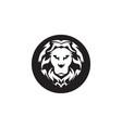 lion sport logo vector image