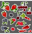 Strawberry Blueberry Cherry Raspberry Red vector image