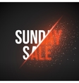 Sunday Sale Energy Explosion Concept vector image vector image
