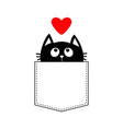 black cat in the pocket looking up to red heart vector image vector image