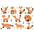 cute little foxes collection set with forest vector image