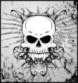 grunge vampire skull vector image
