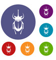 weevil beetle icons set vector image vector image