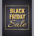 black friday sale golden glitter sparkle on dark vector image