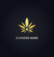 cannabis leaf eco gold logo vector image vector image