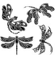 elegant dragonfly silhouettes vector image vector image