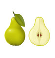 pear realistic green whole vector image vector image