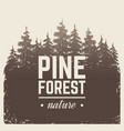 sketch vintage nature pine and fir tree forest in vector image