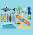 surfing set vector image vector image