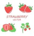 flat strawberry icons set vector image