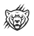 bear head outline silhouette icon