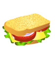 cheese sandwich vector image vector image