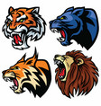 wild animals heads set lion tiger jaguar lynx vector image vector image