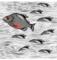 cartoon fish swimming on water background vector image